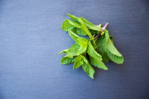 flatten stomach with mint